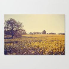 Vintage Field  Canvas Print