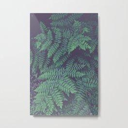 Green Woodland Fern Metal Print