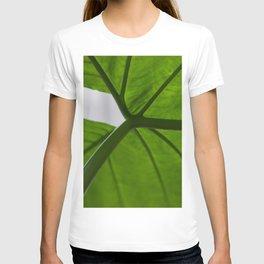Leaf Umbrella T-shirt