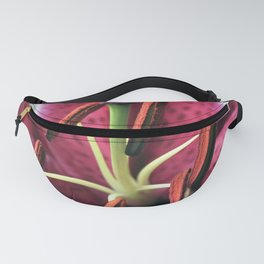 PINK LILLY Fanny Pack