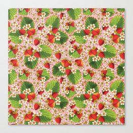Pink Paisley Strawberries Canvas Print