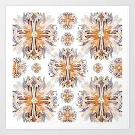 Kaleidoscope II-I Art Print