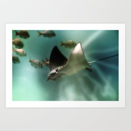 Majestic Flight of the Stingray Art Print