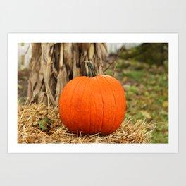 Pumpkin and the leaf Art Print