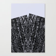 maserung Canvas Print
