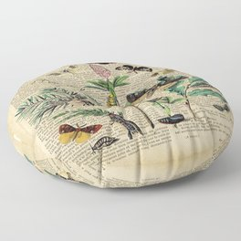 Book Art Caterpillar, Moths & Butterflies Floor Pillow