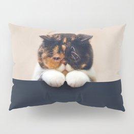 Lonley Cat Pillow Sham