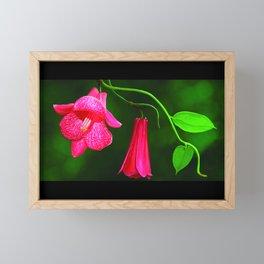 Copihue Framed Mini Art Print