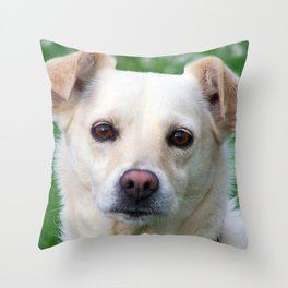 Blond dog portrait Throw Pillow