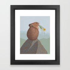 American Pika Framed Art Print