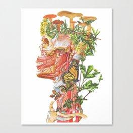 Mushroom Man Canvas Print