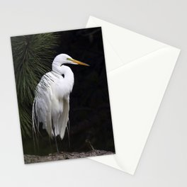 Great White Egret Stationery Cards