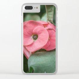 Corona de Cristo - Flower Photography Clear iPhone Case