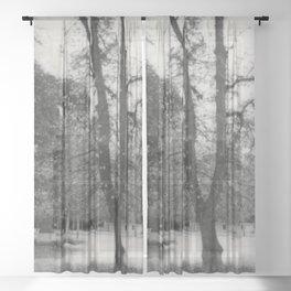 Madrid Sheer Curtain