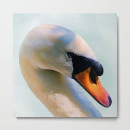 The beautiful swan Metal Print