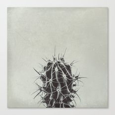 Retro Cactus Canvas Print