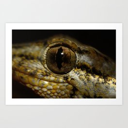 Gecko Running Art Print