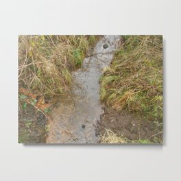 small river Metal Print
