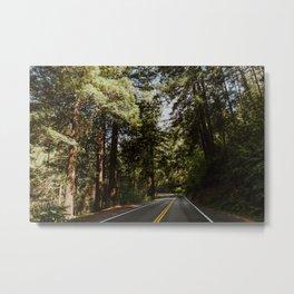 Road through the Redwoods Metal Print