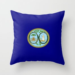 seal of south carolina Throw Pillow