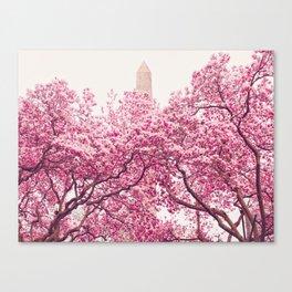 New York City - Central Park - Cherry Blossoms Canvas Print