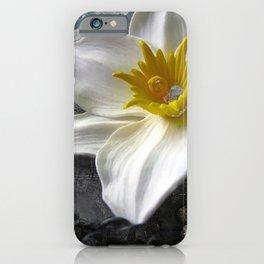Frost Queen iPhone Case
