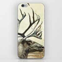 reindeer iPhone & iPod Skins featuring Reindeer by BlueMoonArt
