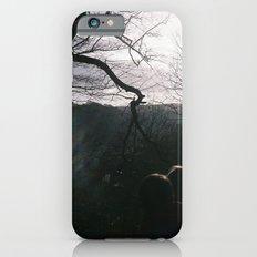 Magical woods iPhone 6s Slim Case