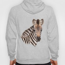 Baby Zebra Hoody