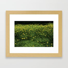500 Drops of Sun Framed Art Print