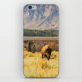 Wild Buffalo iPhone Skin