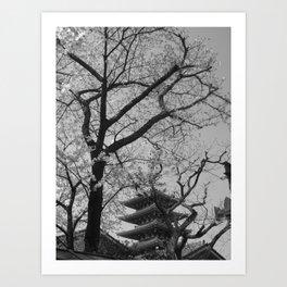 SAKURA @ TOKYO Art Print