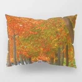 Fall in El Retiro Madrid Pillow Sham