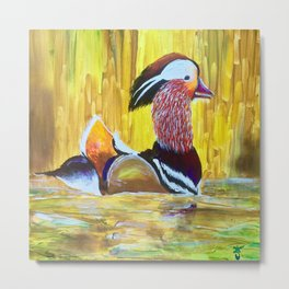 Colorful Mandarin Duck Floating on the water Metal Print