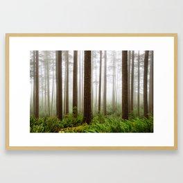 Trees // Fog Framed Art Print