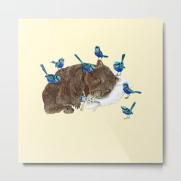 Wrens Wombat sleep Metal Print