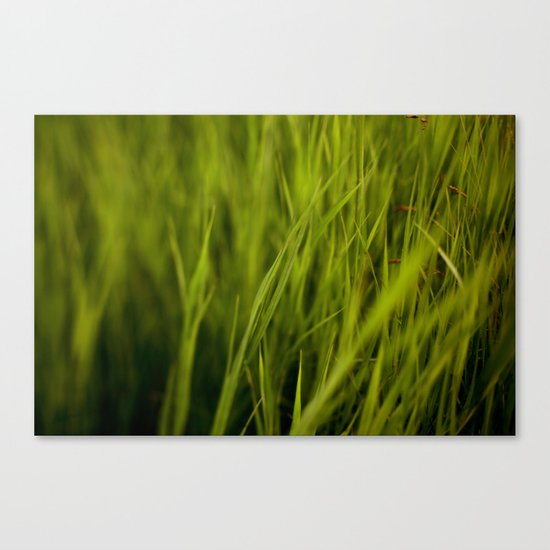 Greener #2 Canvas Print