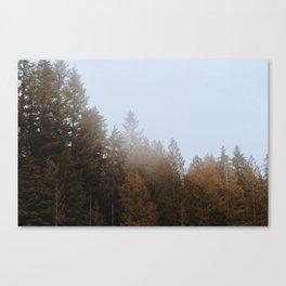 Fall Fog II Canvas Print