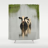 channel Shower Curtains featuring Cow in a channel by Ruurd Jelle van der Leij Highkeyart