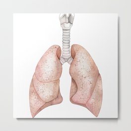 Watercolor anatomy collection - lungs Metal Print