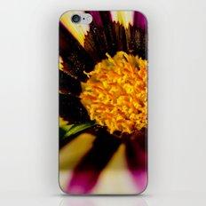 Purple and White iPhone & iPod Skin