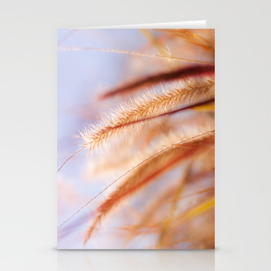 Light on Twig Stationery Cards