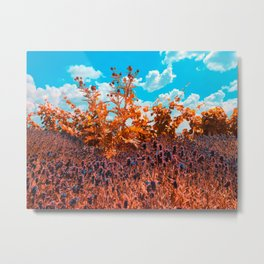 Meditation in the meadow Metal Print