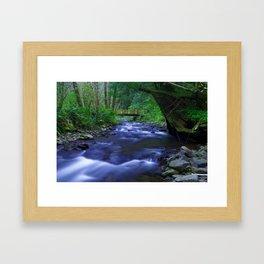 Spring Stream Framed Art Print