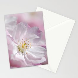Spring 287 cherry pink maro Stationery Cards
