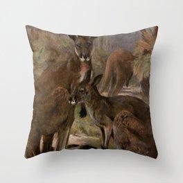 Vintage Kangaroo Painting (1909) Throw Pillow
