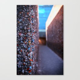 Do you dare enter Bubblegum Alley Canvas Print