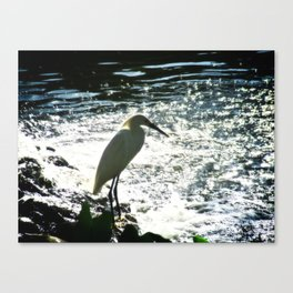 The Egret Canvas Print