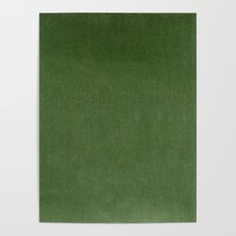 Sage Green Velvet texture Poster
