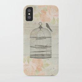 Rustic Birdcage iPhone Case